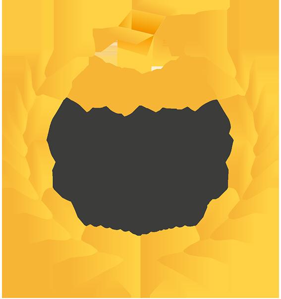 Logo 60 ans d'expertise